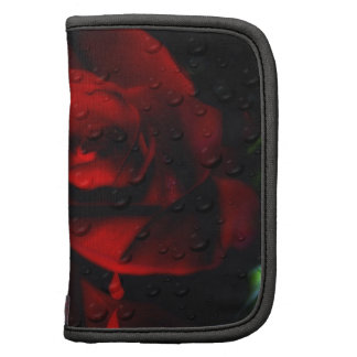 Rosa-Agridulce rojo gótico Organizadores