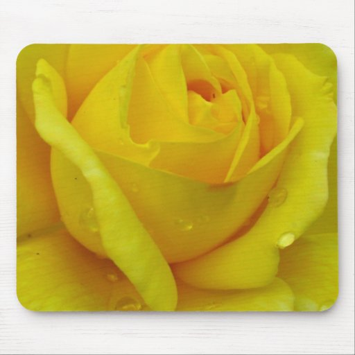 Rosa amarillo alfombrillas de ratón