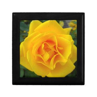 Rosa amarillo caja de regalo
