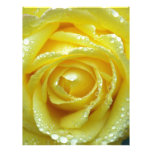 Rosa amarillo con descensos del agua membretes personalizados
