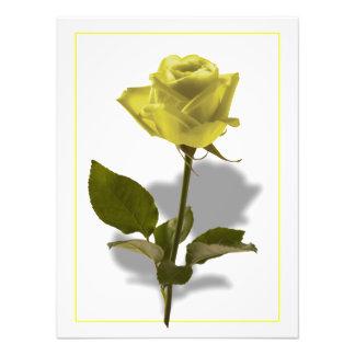 Rosa amarillo de la amistad arte fotografico