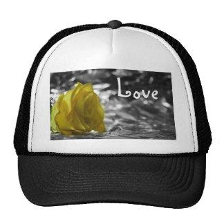 Rosa amarillo en amor del fondo de la plata del la gorro