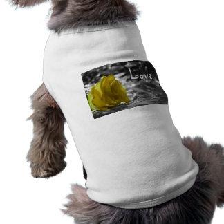 Rosa amarillo en amor del fondo de la plata del la ropa de perro