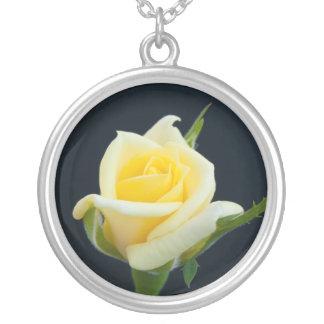 Rosa amarillo en el fondo negro collar plateado