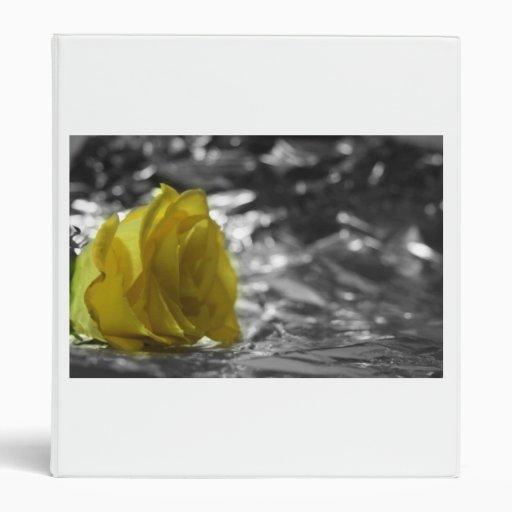 Rosa amarillo en fondo de la plata del lado izquie