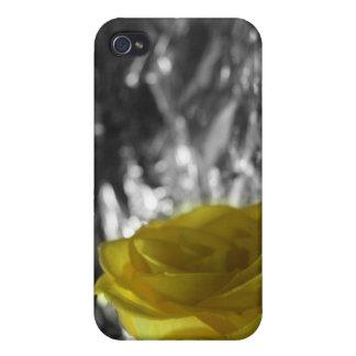 Rosa amarillo en fondo de la plata del lado izquie iPhone 4 carcasas