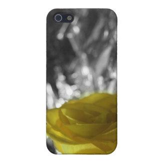 Rosa amarillo en fondo de la plata del lado izquie iPhone 5 fundas