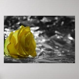 Rosa amarillo en fondo de la plata del lado izquie póster