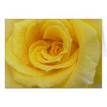 Rosa amarillo felicitación