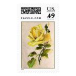 Rosa amarillo franqueo