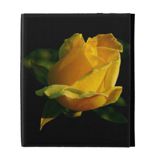 Rosa amarillo grande