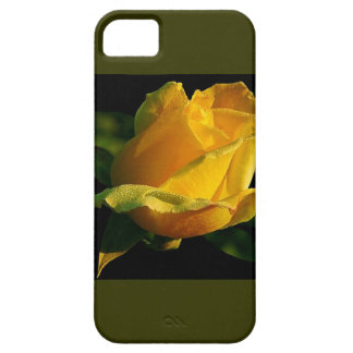 Rosa amarillo grande iPhone 5 carcasa