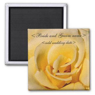 Rosa amarillo imán cuadrado