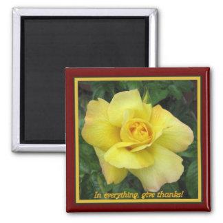Rosa amarillo imán para frigorifico