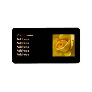Rosa amarillo macro etiqueta de dirección