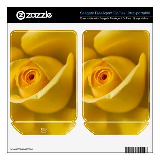 Rosa amarillo macro FreeAgent GoFlex calcomanía