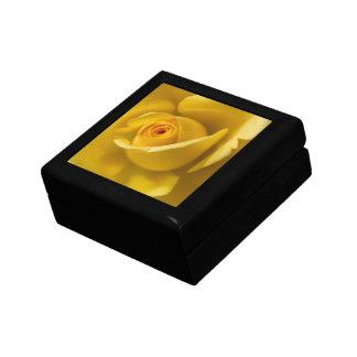 Rosa amarillo macro joyero cuadrado pequeño