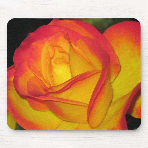 Rosa amarillo Mousepad Alfombrillas De Raton