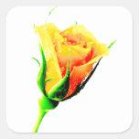 Rosa amarillo pegatina cuadradas