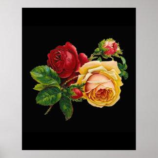 Rosa amarillo rojo contra negro - accesorio del póster