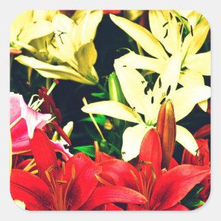 Rosa amarillo rojo pegatina cuadrada
