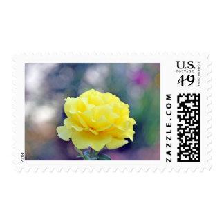 Rosa amarillo sello