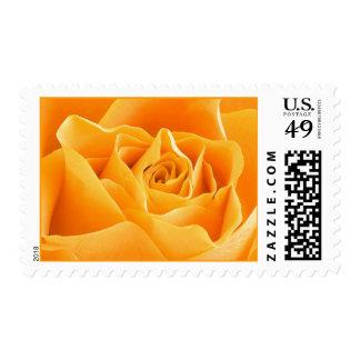 Rosa amarillo sello postal