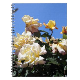 Rosa amarillo spiral notebook