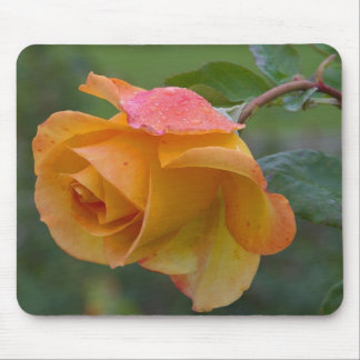 Rosa amarillo tapetes de raton