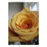 Rosa amarillo tarjetas