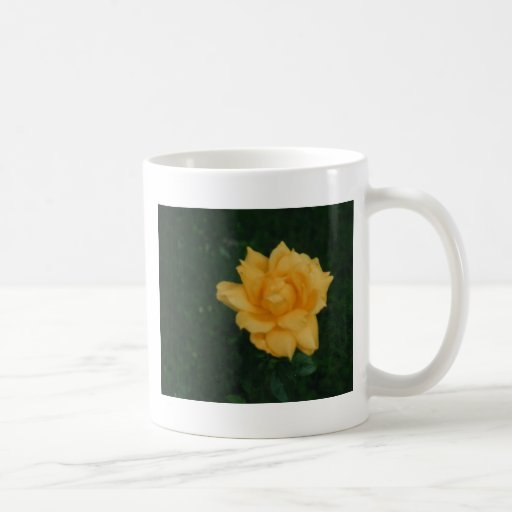 Rosa amarillo taza básica blanca