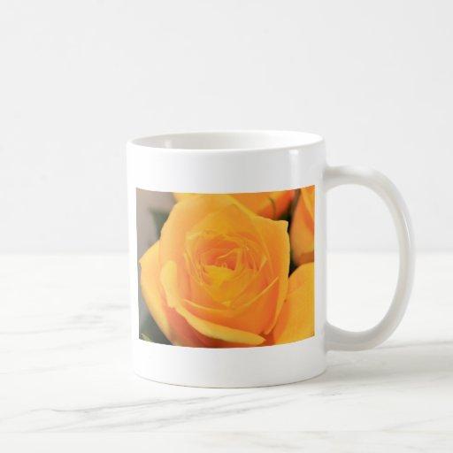 Rosa amarillo taza clásica