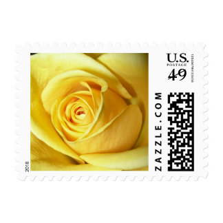 rosa amarillo timbres postales