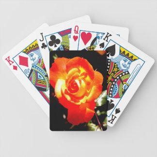 Rosa anaranjado abierto para el amor baraja