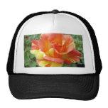Rosa anaranjado y amarillo 1 gorras