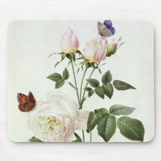 Rosa: Bengale the Hymenes, from 'Les Roses' Mouse Pad