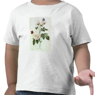 Rosa Bengale the Hymenes Tees