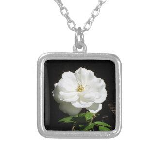 Rosa blanco bonito colgante cuadrado