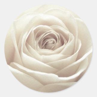 Rosa blanco bonito pegatina redonda