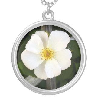 Rosa blanco colgante redondo