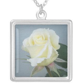 Rosa blanco (collar) colgante cuadrado