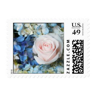 Rosa blanco con el sello azul de las flores