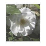 Rosa blanco con la sombra de las hojas que caen en blocs de papel