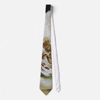 Rosa blanco corbata