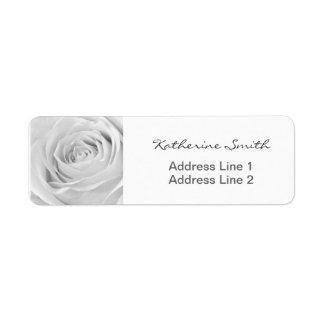 Rosa blanco de la foto floral de la naturaleza del etiquetas de remite