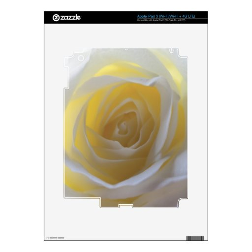 Rosa blanco elegante pegatinas skins para iPad 3