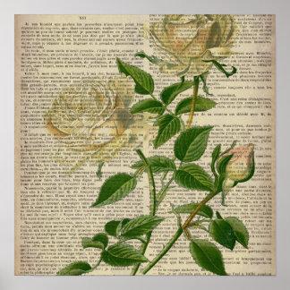 rosa blanco femenino del arte botánico romántico