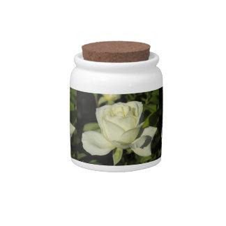Rosa blanco platos para caramelos