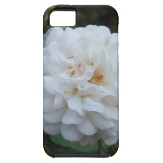 Rosa blanco iPhone 5 Case-Mate protector