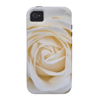 Rosa blanco iPhone 4/4S carcasa